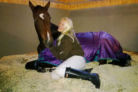 Trött häst efter dagens övning